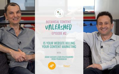 How Your Website Speed Could be Killing Your Content Marketing, with Peakhour.io
